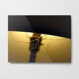 Lamp Shade Metal Print