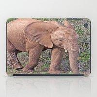 baby elephant iPad Cases featuring Baby Elephant by Lynn Bolt