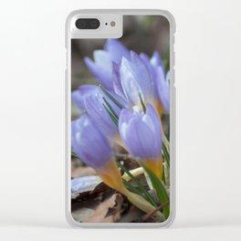 Crocus etruscus in silva Clear iPhone Case
