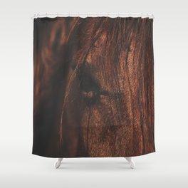 Horse - Sioux Shower Curtain
