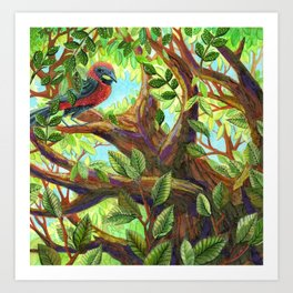 Bird up a Tree Art Print