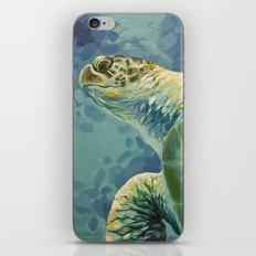 Green Sea Turtle iPhone & iPod Skin