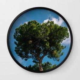 Italian Stone Pine Tree II Wall Clock