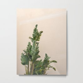 Tropical palms on pastel | Lush greenery in the South of France | Botanical art print Metal Print