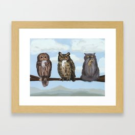 One of These Things is Not Like the Others (aka 'Hoot! Hoot? Mrowr.') Framed Art Print