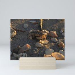 Little Crab Mini Art Print