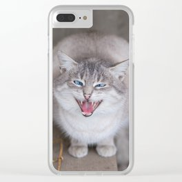 Angry blue-eyed cat Clear iPhone Case