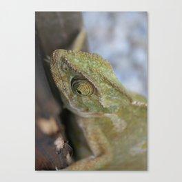 Wild Chameleon In Green Shades Canvas Print