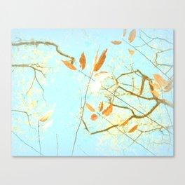 November Tree with Powder Sky I Canvas Print