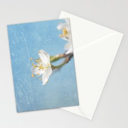 White and Blue Spring no. I Stationery Cards