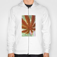 Red Leaf Hoody