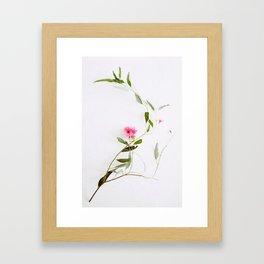 Eucalyptus Sway Framed Art Print