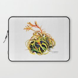 Tillandsia Xerographica Air Plant Watercolor Laptop Sleeve