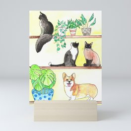 Cats, Corgi, Plants on Shelves Mini Art Print