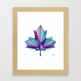 Canada 150 // Cool Framed Art Print
