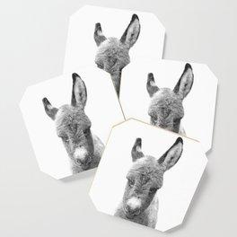 Black and White Baby Donkey Coaster