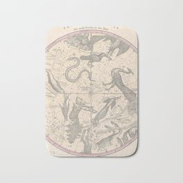 Burritt - Huntington Map of the Stars: The Southern Hemisphere Bath Mat
