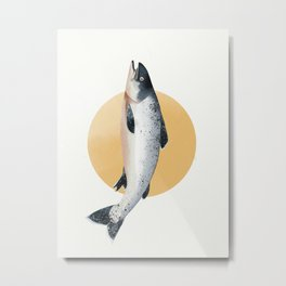 Malibu Salmon Metal Print