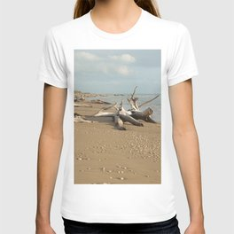 Natural reserve, south of Sicily T-shirt