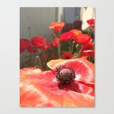 Reminders Canvas Print