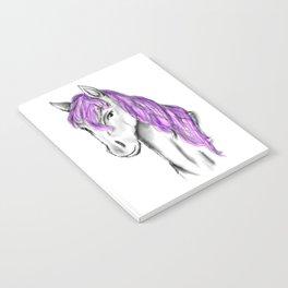 Princess Horse Notebook