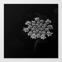 lace Canvas Prints featuring Lace by SilverSatellite