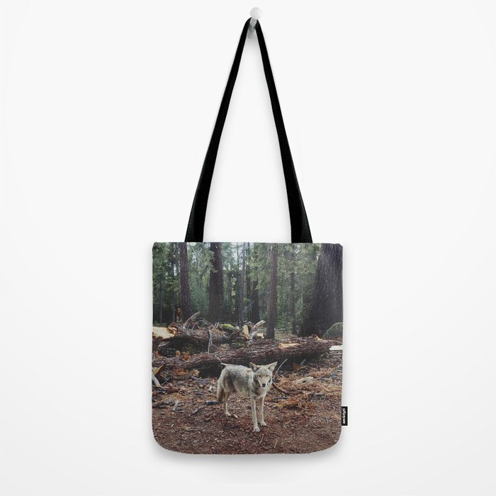 Injured Coyote Tote Bag