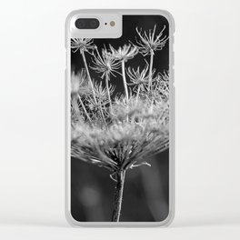 Withered pointed hogweed Clear iPhone Case