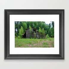 Hidden Shack 2 Framed Art Print