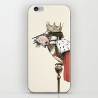 king iPhone & iPod Skins featuring King Fisher by Eric Fan