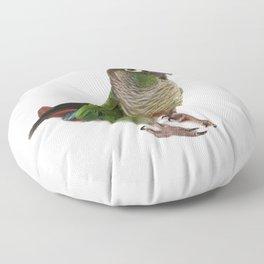 Zeph - Green Cheek Conure Floor Pillow