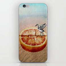 L'orange iPhone & iPod Skin