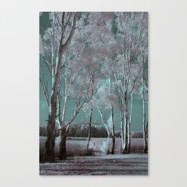 Where Spirits Whisper Canvas Print