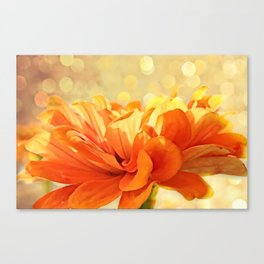 Glowing Marigold Canvas Print