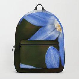 Snow glories Backpack