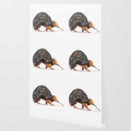 Echidna Wallpaper