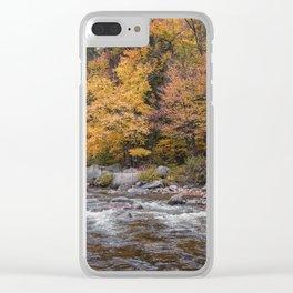 Foliage Creek Clear iPhone Case