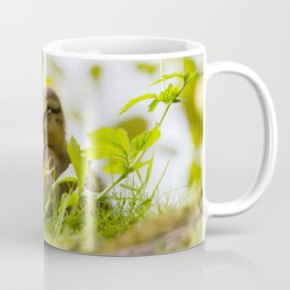 Yawning Coffee Mug
