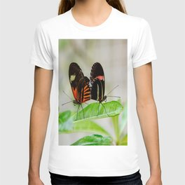 Butterfly Pair T-shirt