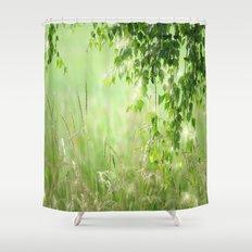 Birch leaves Shower Curtain