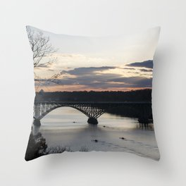 Boat House Row, Schuylkill River, PA Throw Pillow