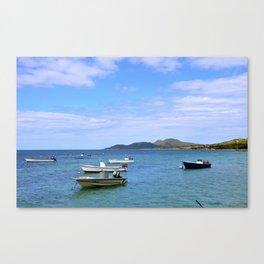 Vieques I Canvas Print