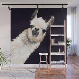 Sneaky Llama in Black Wall Mural