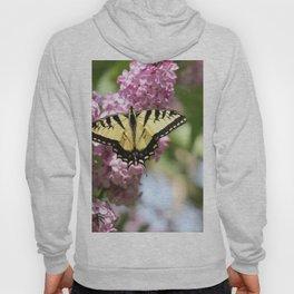 Swallowtail butterfly On Lilacs Hoody