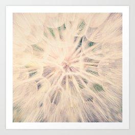 Macro Dandelion Art Print