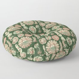 Ernst Haeckel Discomedusae Jellyfish Floor Pillow
