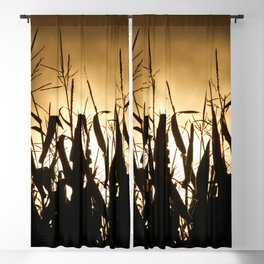 Corn field silhouettes Blackout Curtain