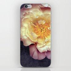 p a e o n i a iPhone & iPod Skin