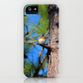 Bluebird On Little Branch iPhone Case