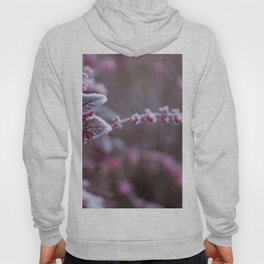 Pink Flowers Frostbit Snow (Color) Hoody